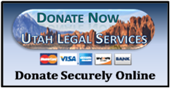 Donate to ULS Online via PayPal